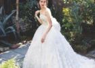 熱海フォトウェディング ドレス&タキシードレンタル モリノブライズ