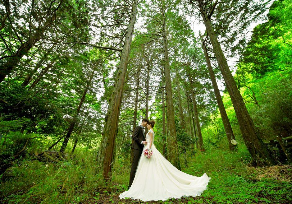 Hakone 2Spot Daytime<br>Wedding Photo Shooting